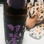 ワイングラスと日本酒のコラボ。羽根屋の純米大吟醸50 翼がめちゃくちゃ美味しい